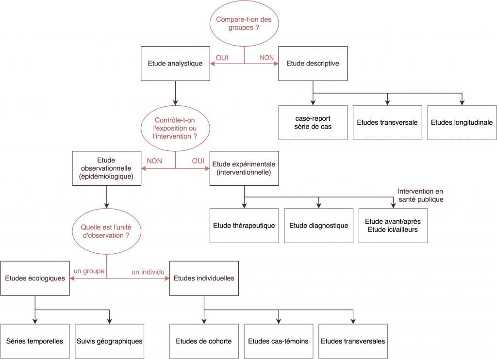 Algorithme des études quantitatives